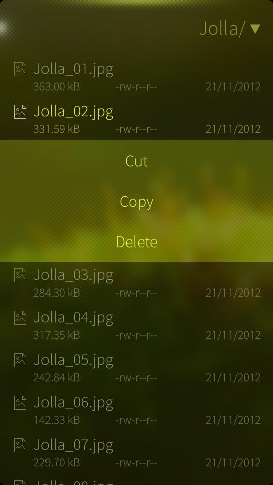 Using the File Browser – Jolla Service and Support